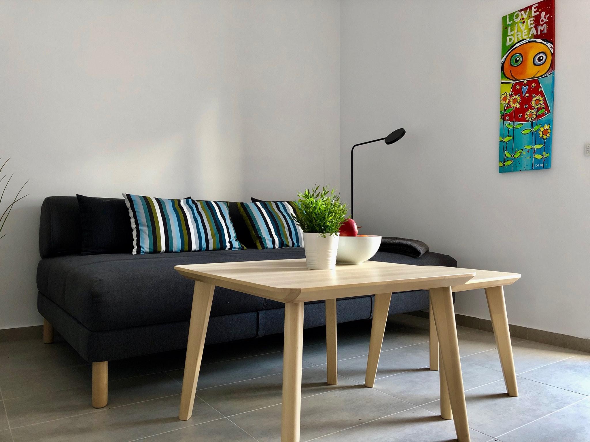 CN41 10 living room sofa bed